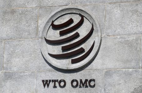 Thwart U.S. veto or await new president? WTO has leadership dilemma